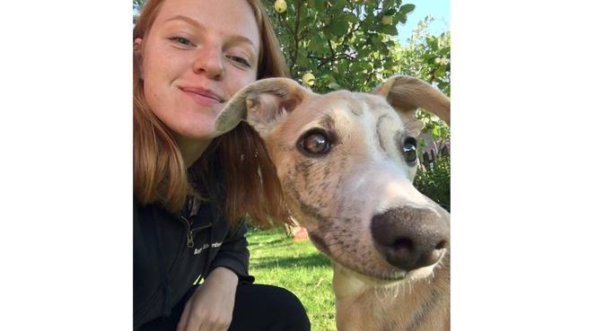 Hundälskare vill passa hund i Linköping, hundvakt nära Linköping