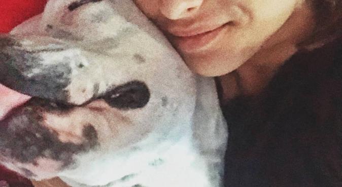Melli's dogs lover ❤️, dog sitter a Genova, GE, Italia