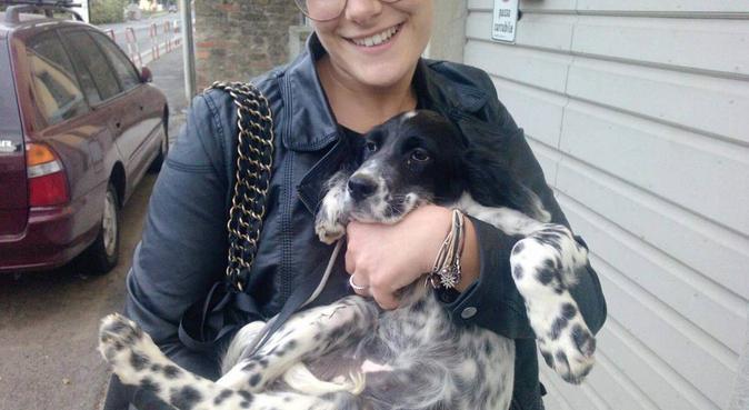 Soggiorno 5 stelle per il pelosino di casa, dog sitter a Perugia, PG, Italia
