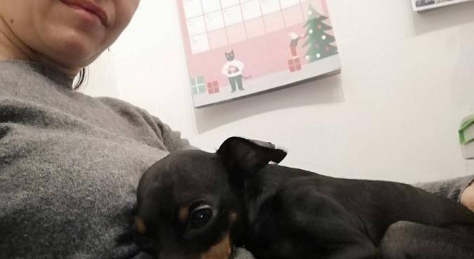 Coccole, Passeggiate e Fantasia..., dog sitter a Roma