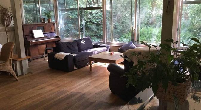Dog retreat in spacious forest villa, hondenoppas in Bennebroek