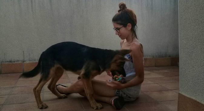 ¡¡La vida es mejor con perros!!, canguro en Corbera de Llobregat