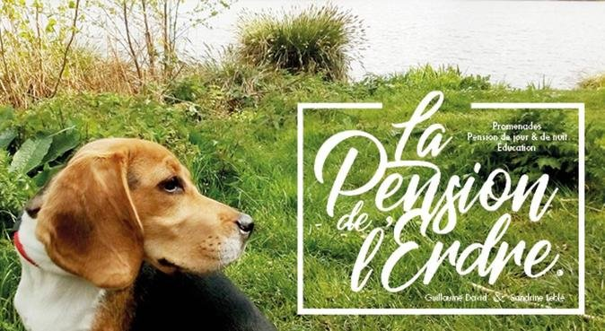 La pension de l'Erdre, dog sitter à Nantes