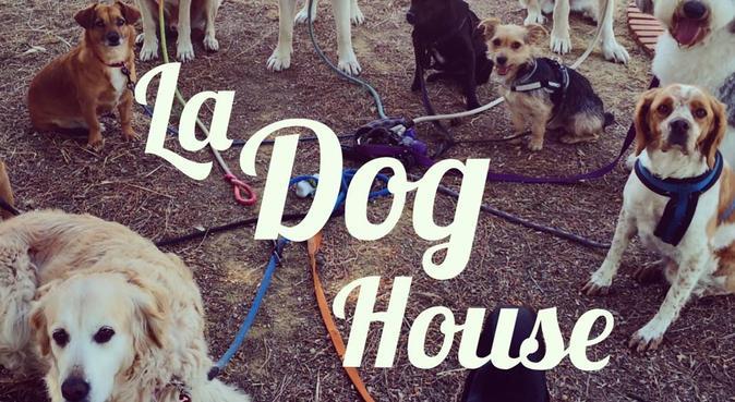 La Dog House, canguro perruna en Sevilla, canguro en Sevilla