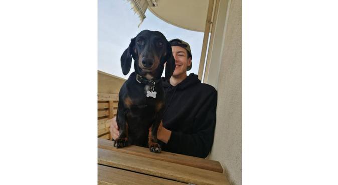 Tante coccole e passeggiate per i vostri cuccioli, dog sitter a Rimini, RN, Italia