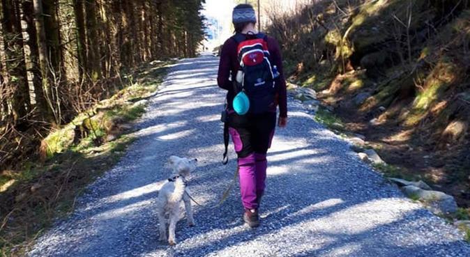 Turglad student frå Arna!, hundepassere i YTRE ARNA