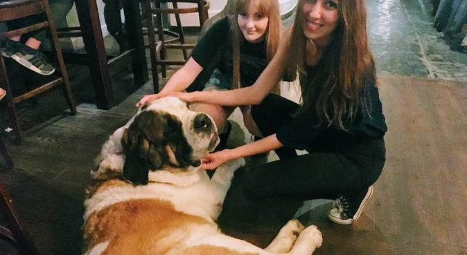 Dog lover, dog sitter in Guildford