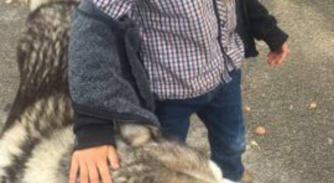 Mimi for outdoor dogs, dog sitter in birmignham