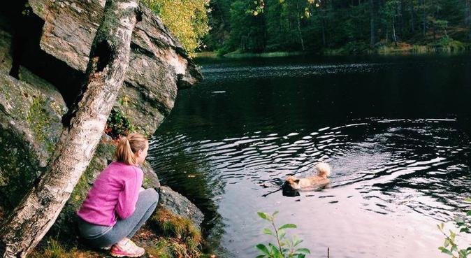 Turglad med stor kjærlighet for hunder!, hundepassere i Oslo