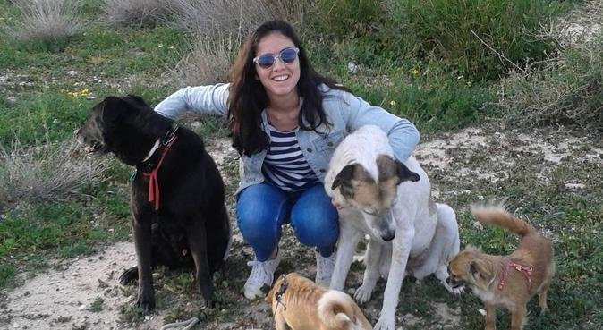 MARINA DOG ALICANTE!, canguro en Alicante
