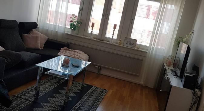 Kärleksfull hundvakt finns, hundvakt nära Göteborg