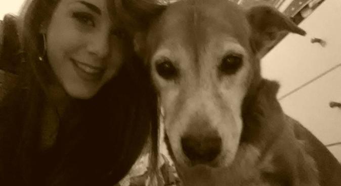 Passeggiate e possibilità di soggiorno, dog sitter a Parma