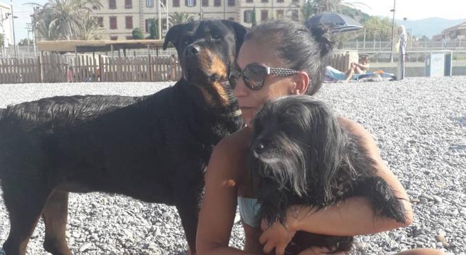 Passeggiando divertendosi con Zia Silvia, dog sitter a Monza, MB, Italia