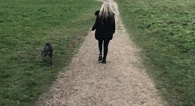Dog walker and lover, dog sitter in Nottingham