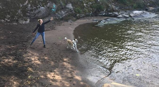 Loving dog daycare with walks in Flemmingsberg!, hundvakt nära Huddinge