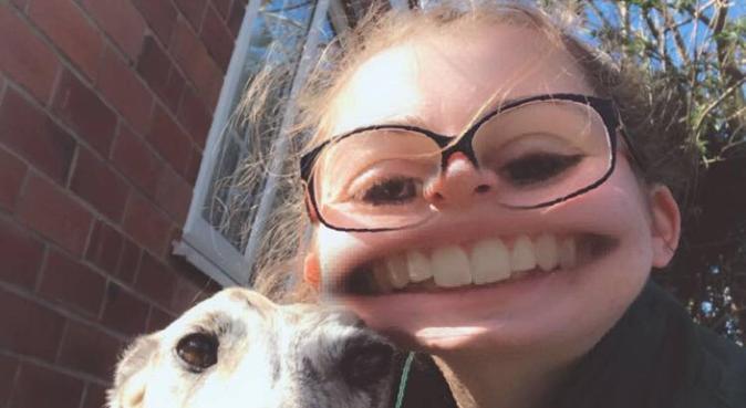 Loving long dog walks in Nottingham, dog sitter in Nottingham