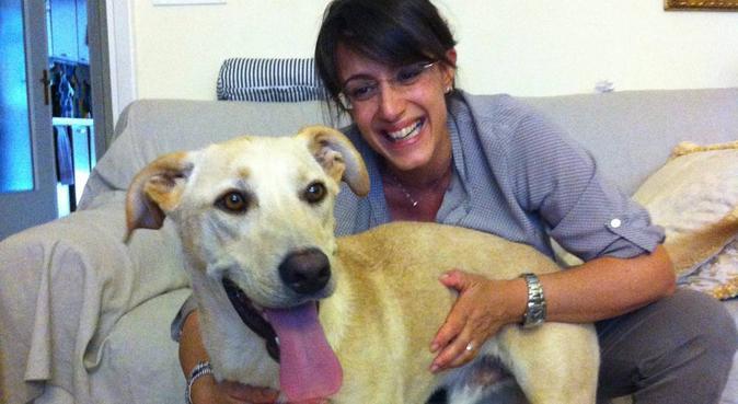 Errare è umano, perdonare è canino!, dog sitter a Torino