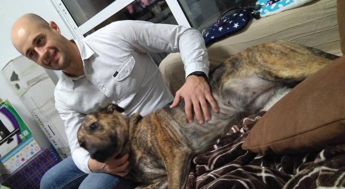 Amigo de los perros para pasear, canguro en A Coruña