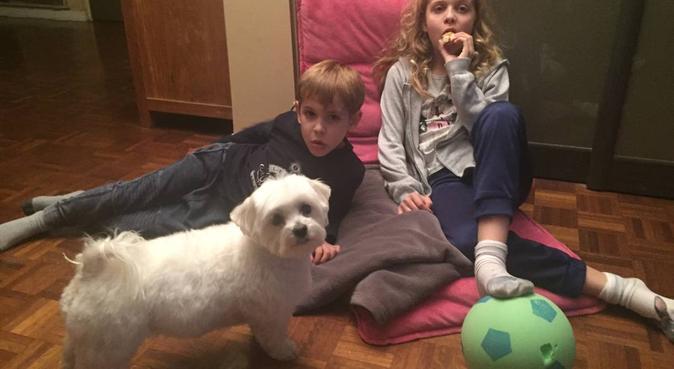 famille avec 2 enfants à castellane - appartement, dog sitter à Marseille