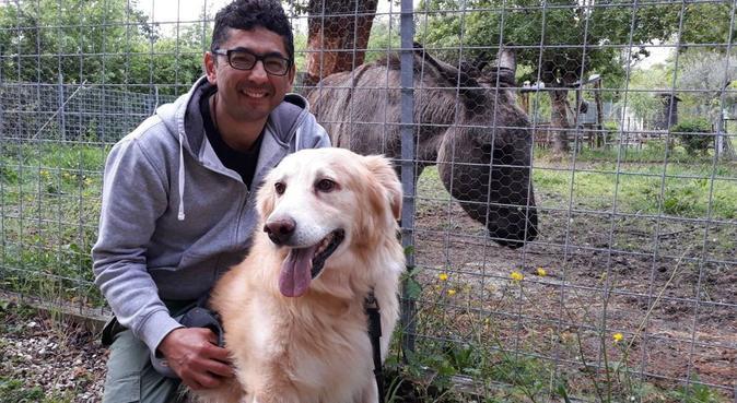 Sicurezza giochi e divertimento, dog sitter a Rimini