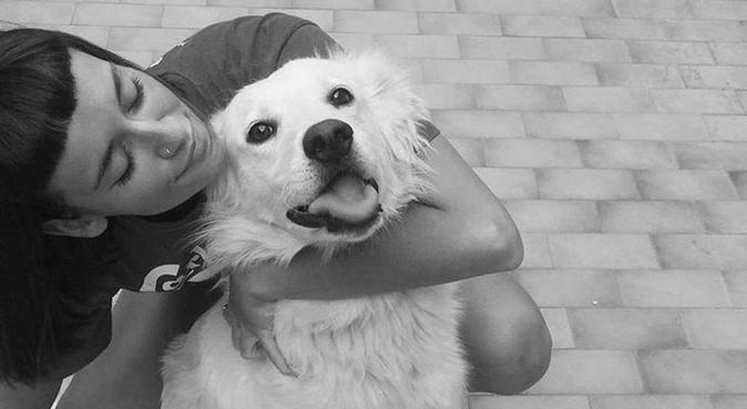 Coccole e divertimento con l' amica dei cani, dog sitter a Bologna