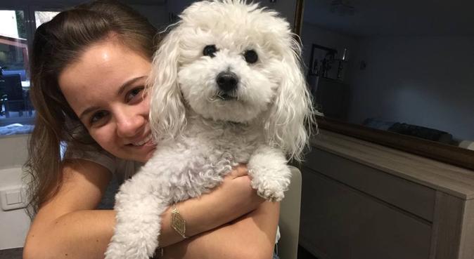 DogSitter aux petits soins pour chiens heureux, dog sitter à Marseille