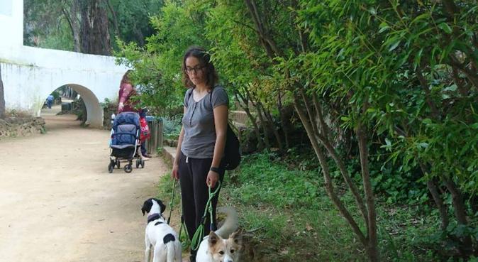 Estudiante de ATV, amante de los perros., canguro en Alcalá de Guadaíra