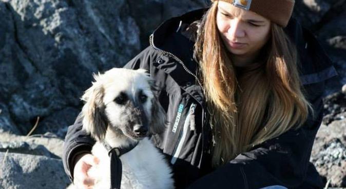 Savner å ha hund, passer gjerne din!, hundepassere i Oslo, Norge