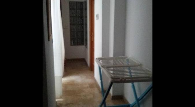 El lugar que tu perrito busca, canguro en Córdoba