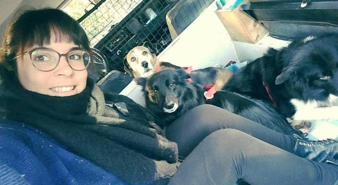 Il vostro cane in buone mani!, dog sitter a Lucca