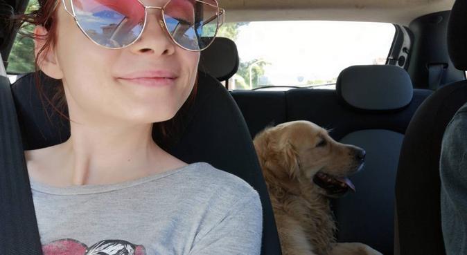 Coccole per loro, relax per voi!, dog sitter a Monte porzio catone