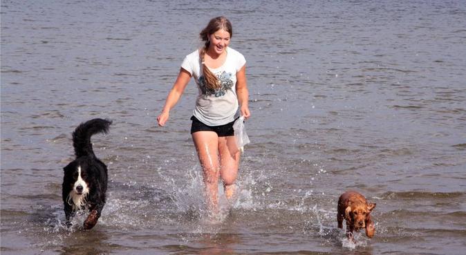Lek- och promenadglad hundpassning, hundvakt nära Linköping
