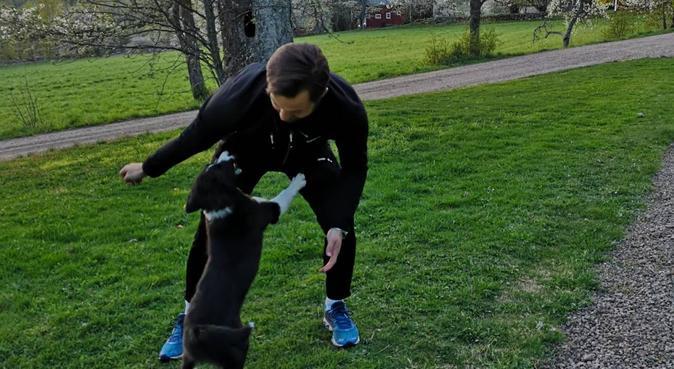 Djurälskande personer redo för hundpassning, hundvakt nära Linköping
