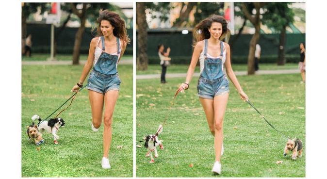 Dog lover qui adorerait s'occuper de vos chiens :), dog sitter à Paris