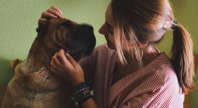 PASEADORA DE PERROS A LA QUE LE ENCANTAN, canguro en Salamanca