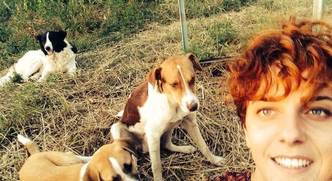 Dog Walker Tako :), canguro en Torrevieja