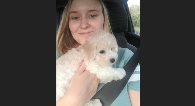 Aktiv och kärleksfull hundpassare, hundvakt nära LINKOPING