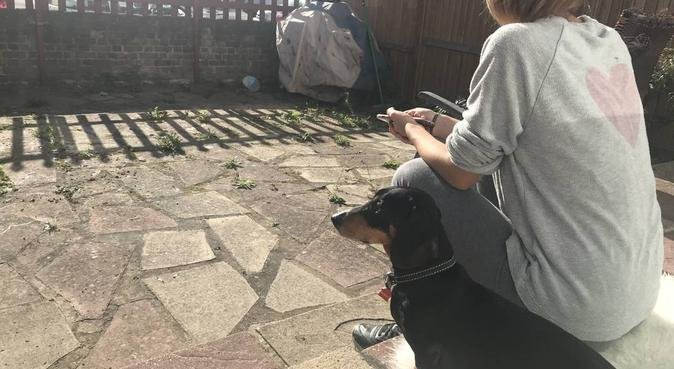 Walkies and cuddles in the East End!, dog sitter in London
