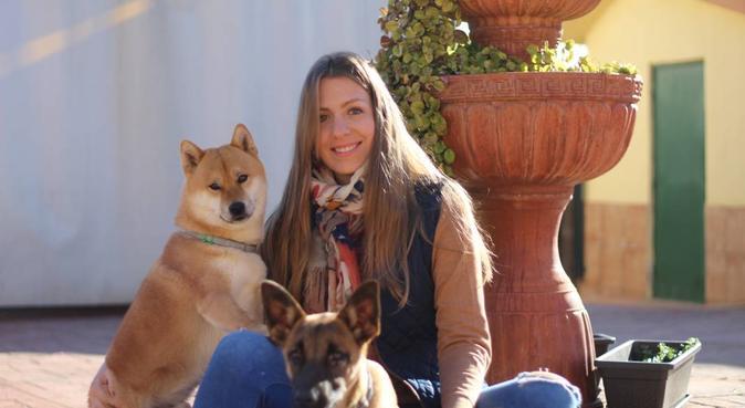 La mejor opción para tus mascotas!, canguro en Almensilla