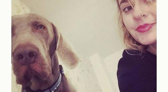 Ohmydog!! I'm your local dog walker and boarder, dog sitter in Dagenham