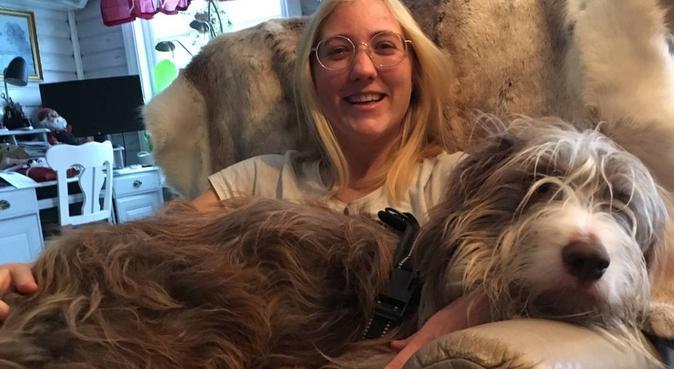 Trenger mer hund i livet mitt <3, hundepassere i Oslo