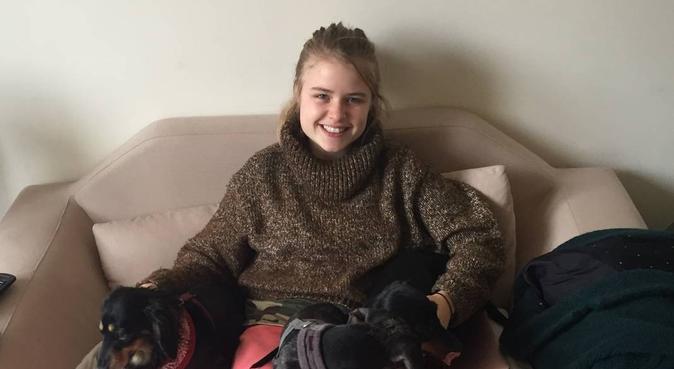 Love and care in edinburgh, dog sitter in Edinburgh