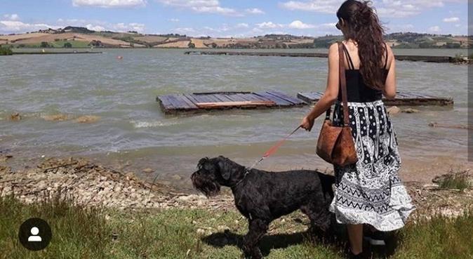 Mi alegría empieza dónde empieza la de mis perros, canguro en Sevilla, Spagna