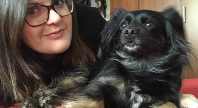 Passeggiate e tanti momenti felici insieme!, dog sitter a Firenze