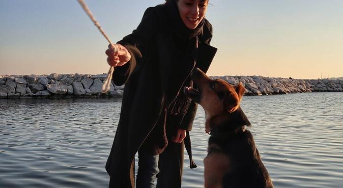 Tante coccole, giochi e lunghe passeggiate!!, dog sitter a Napoli