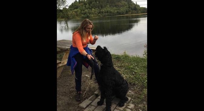 Hundekos og turer av ypperste kvalitet!, hundepassere i Trondheim