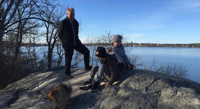 Interlink med alla hundindivider, hundvakt nära Stockholm