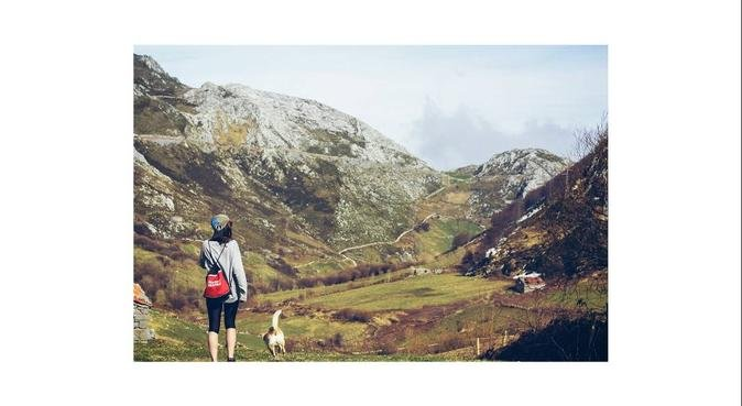 La mejor compañía para un paseo, canguro en Santander