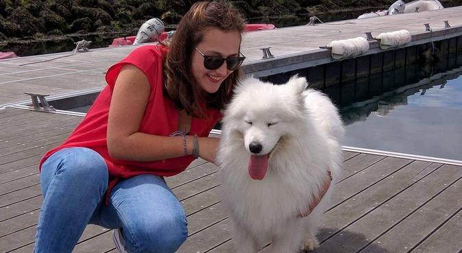 Promenades de vos loulou sur Angers, dog sitter à Angers