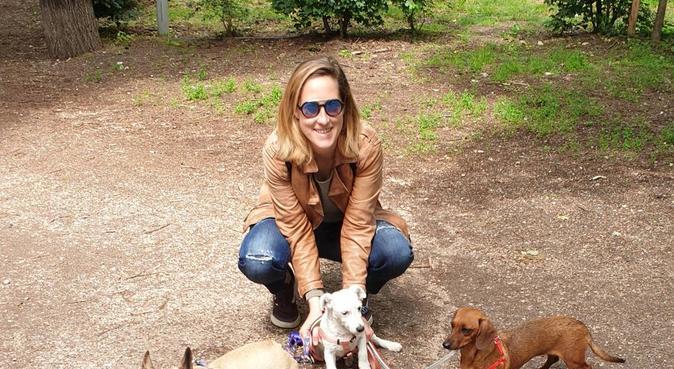 Tante coccole e passeggiate per il tuo cucciolotto, dog sitter a Parma, PR, Italia